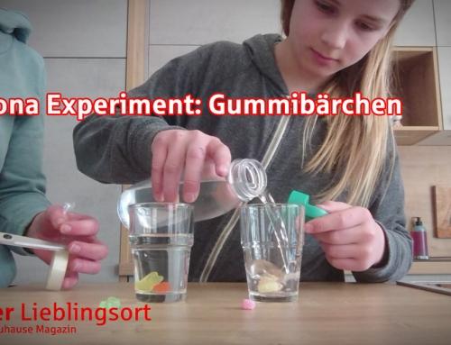Familie Petzi – Das Experiment Gummibärchen
